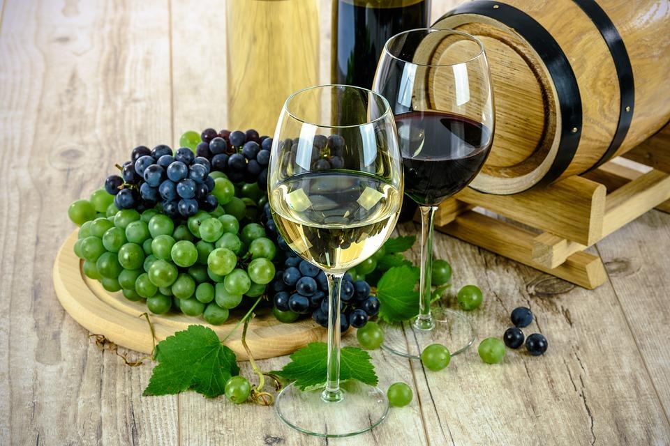 wine fest burgas