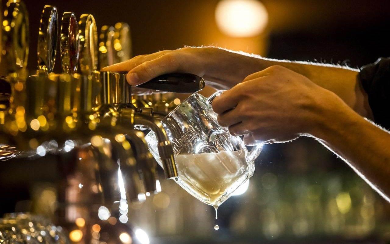 beer festival plovdiv