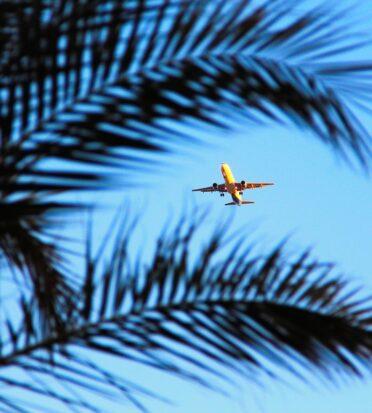 plane egypt