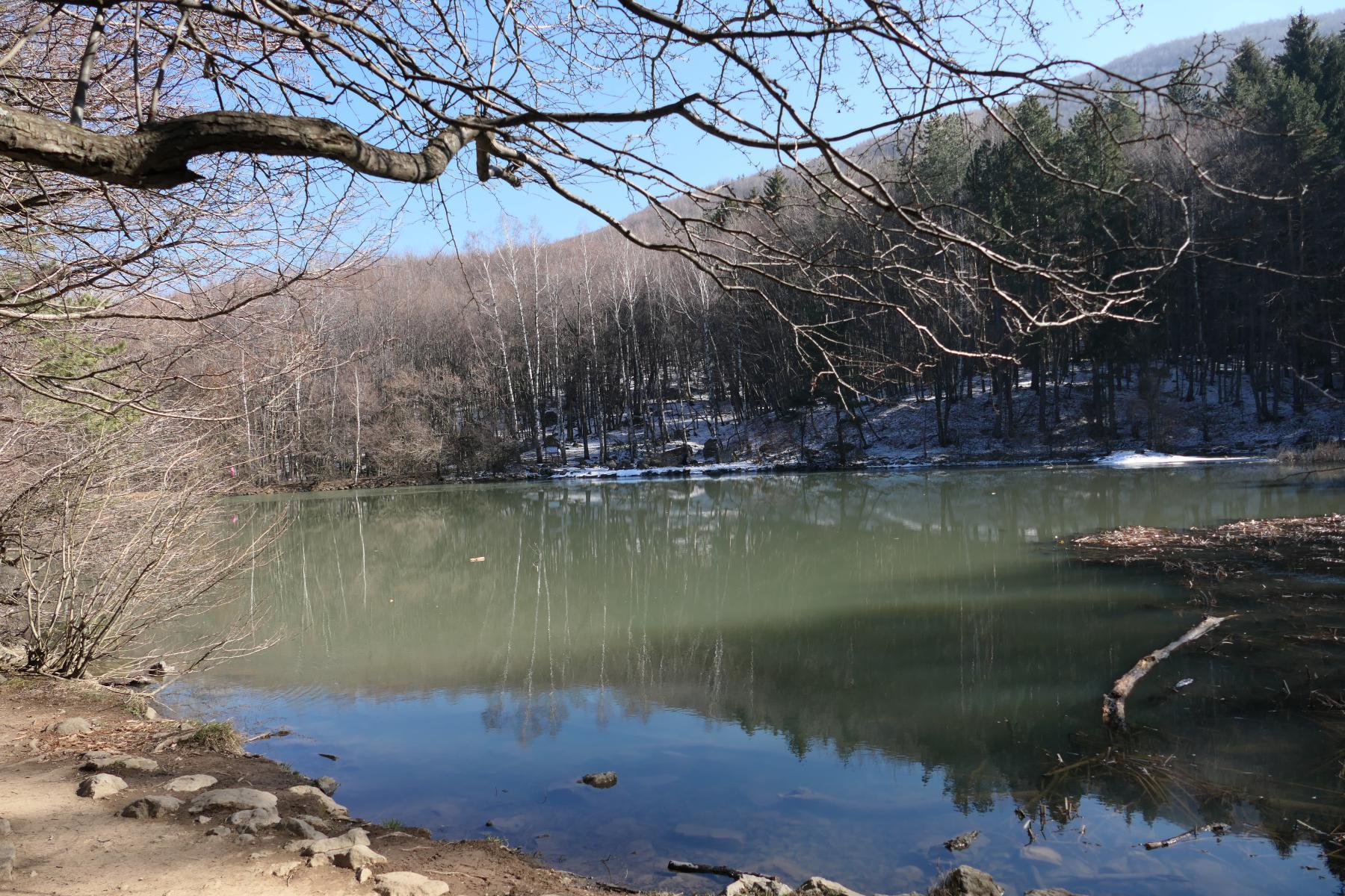 Boyana lake